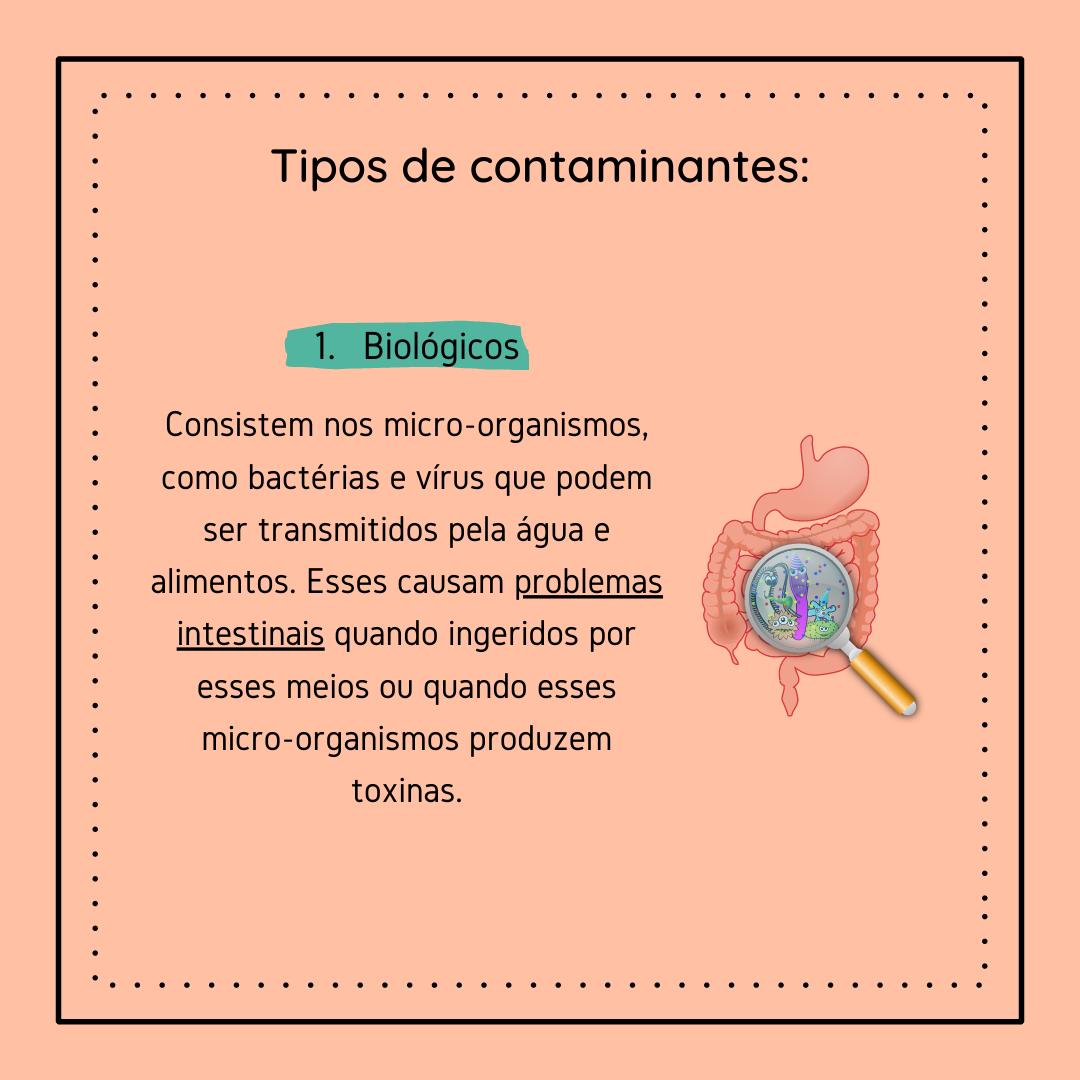 Higienização 4